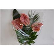 ANTHURIUM X 3 BOUQUET -
